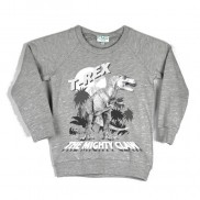 T-REX COLOUR CHANGE CAKO KIDS SWEATER