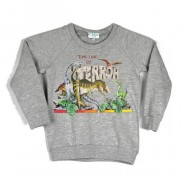 TERROR DINOSAUR COLOUR CHANGE CAKO KIDS SWEATER